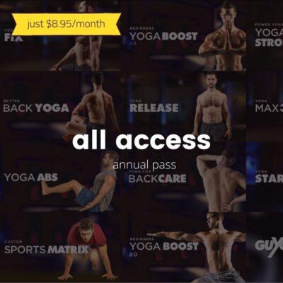 All Access (12 months)