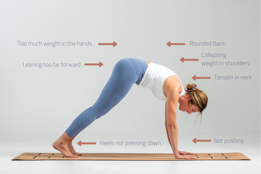 Pose Guide Lift your tailbone
